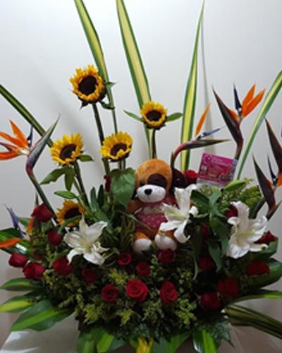 Flores y Peluches 5